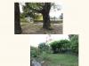 photo-montée-jardinsdutao5