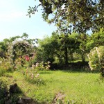 les jardins du tao à Joannas - l'école du Qi