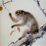 qi gong l'école du qi singe