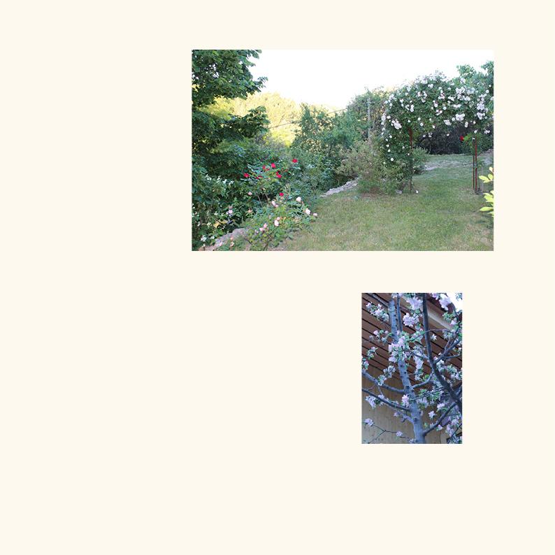photo-montée-jardinsdutao6