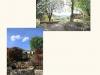 photo-montée-jardinsdutao7
